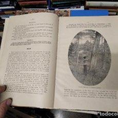 Libros antiguos: PRODUCTOS DEL BOSQUE . LORENZO JOU Y OLIÓ . FOTOGRAFÍAS JACQUES BOYER . SUCESORES BLAS CAMÍ. Lote 222551575
