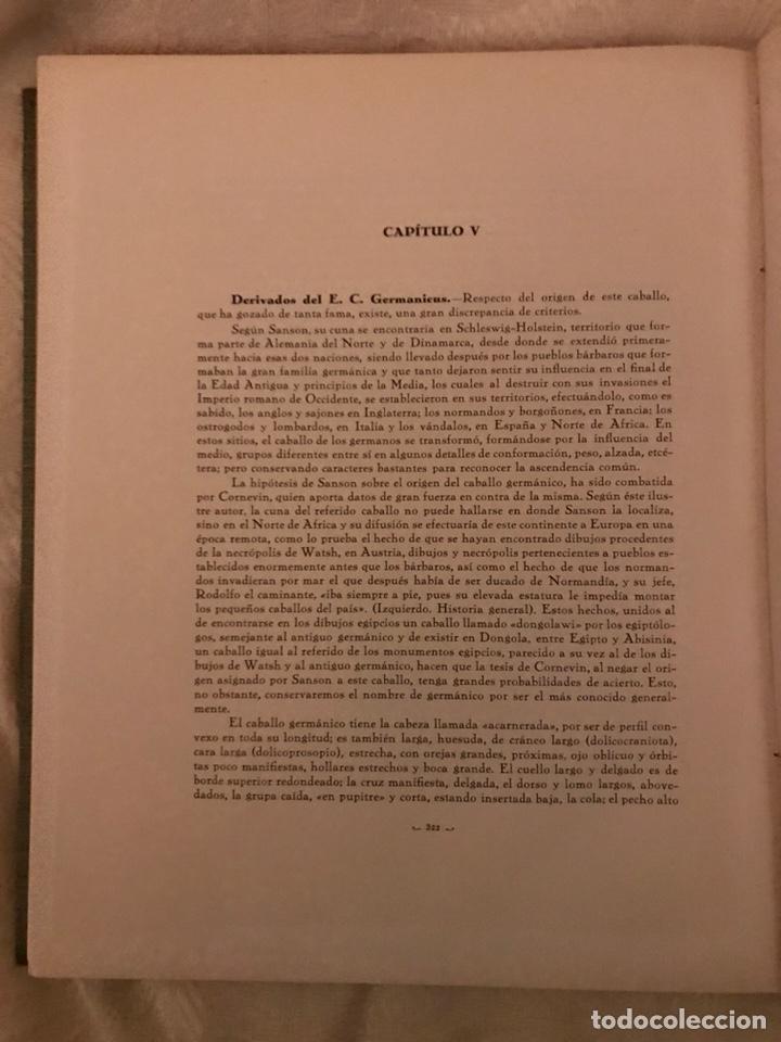 Libros antiguos: Recopilación de estudios de cría caballar por el marqués de Negrón y equitacion hipica caballos - Foto 6 - 112132702