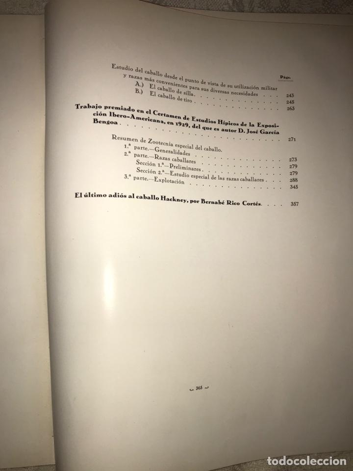 Libros antiguos: Recopilación de estudios de cría caballar por el marqués de Negrón y equitacion hipica caballos - Foto 17 - 112132702