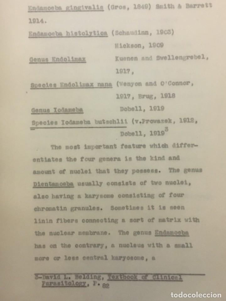 Libros antiguos: TESIS DOCTORAL EN PUERTO RICO : EL PARÁSITO AMOEBAE DEL HOMBRE. SYLVIA MONTESERÌN 1949. LIBRO UNICO - Foto 6 - 154743306