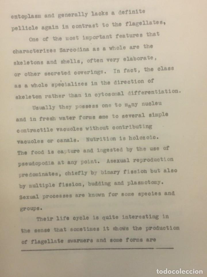 Libros antiguos: TESIS DOCTORAL EN PUERTO RICO : EL PARÁSITO AMOEBAE DEL HOMBRE. SYLVIA MONTESERÌN 1949. LIBRO UNICO - Foto 7 - 154743306