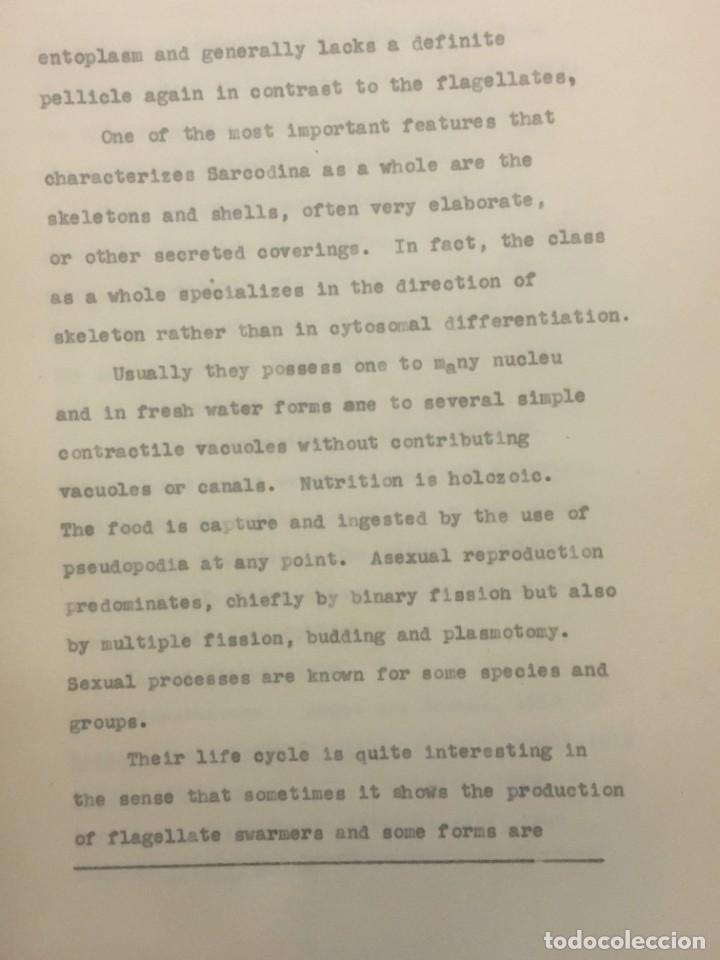 Libros antiguos: TESIS DOCTORAL EN PUERTO RICO : EL PARÁSITO AMOEBAE DEL HOMBRE. SYLVIA MONTESERÌN 1949. LIBRO UNICO - Foto 8 - 154743306