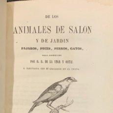 Libros antiguos: DE LOS ANIMALES DE SALÓN Y DE JARDIN. PÁJAROS, PECES, PERROS, GATOS. DOMINGO DE LA VEGA Y ORITZ. Lote 228181090