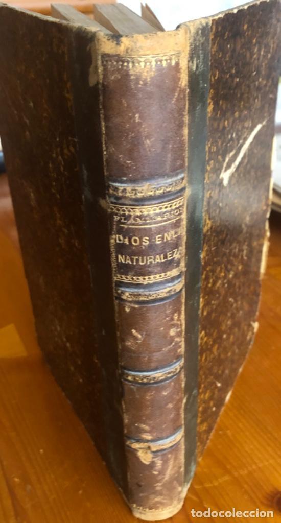 Libros antiguos: DIOS EN LA NATURALEZA- CAMILO FLAMMARION- MADRID 1878 - Foto 8 - 229192915