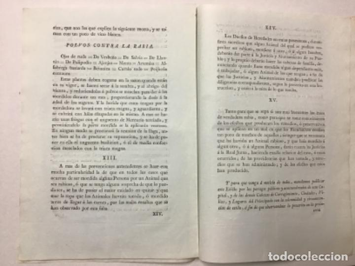 Libros antiguos: ASALTO, Conde del. iNSTRUCCIÓN sobre cómo actuar ante la presencia de perros rabiosos en las calles - Foto 2 - 234841265