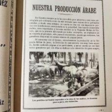 Libros antiguos: JEREZ DE LA FRONTERA - FERIA DE CABALLOS - 1929 - CONCURSO EQUINO. Lote 236249325