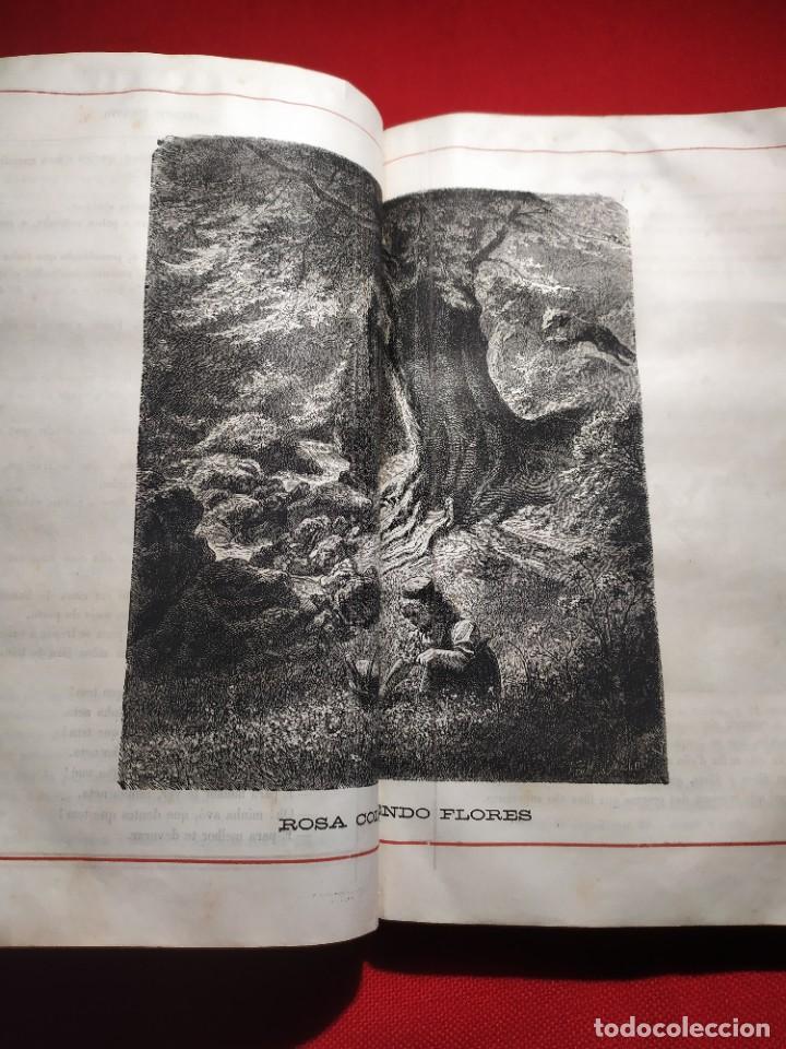 Libros antiguos: 1876. Biblioteca de Educaçao e Recreio. Completo. Raro. - Foto 18 - 238104215