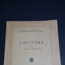 Libros antiguos: L´OLIVERA, AUGUST MATONS. 1923.. Lote 246713680