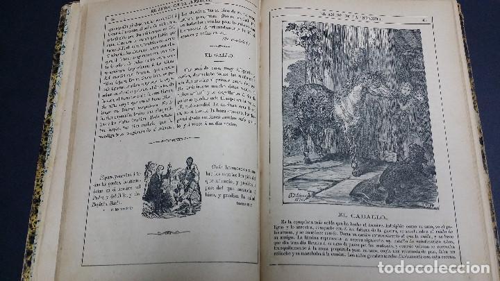 Libros antiguos: El amigo de la infancia 1883, año X. - Foto 6 - 246719050