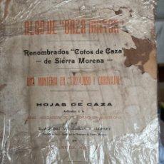 Libri antichi: ALGO DE CAZA MAYOR RENOMBRADOS COTOS DE SIERRA MORENA POR MANUEL SAURI 1910. Lote 251928050