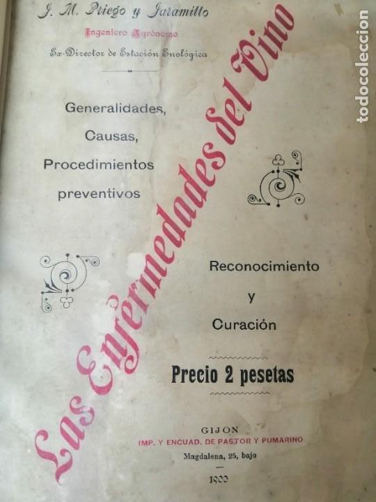 LAS ENFERMEDADES DEL VINO PRIEGO Y JARAMILLO 1900 ILUSTRADO MUY RARO (Libros Antiguos, Raros y Curiosos - Cocina y Gastronomía)
