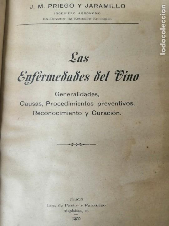 Libros antiguos: LAS ENFERMEDADES DEL VINO PRIEGO Y JARAMILLO 1900 ILUSTRADO MUY RARO - Foto 4 - 269300383