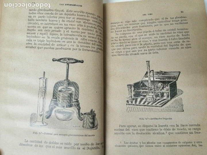 Libros antiguos: LAS ENFERMEDADES DEL VINO PRIEGO Y JARAMILLO 1900 ILUSTRADO MUY RARO - Foto 5 - 269300383