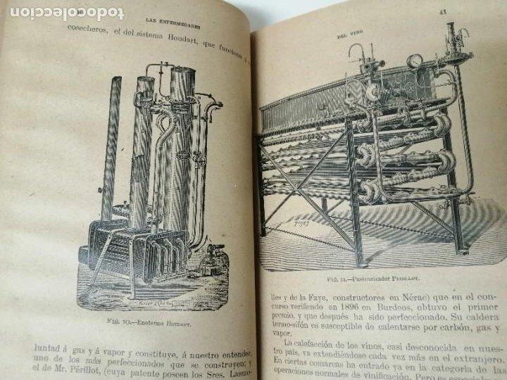 Libros antiguos: LAS ENFERMEDADES DEL VINO PRIEGO Y JARAMILLO 1900 ILUSTRADO MUY RARO - Foto 6 - 269300383