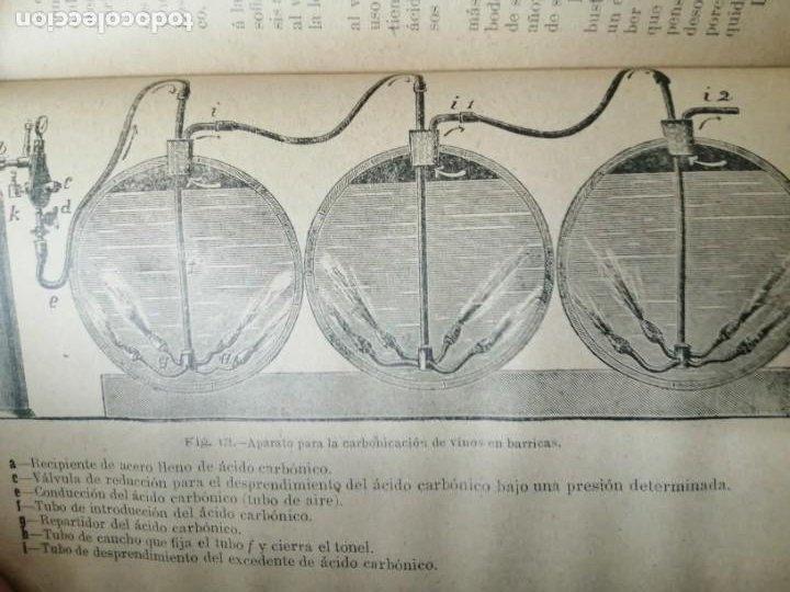 Libros antiguos: LAS ENFERMEDADES DEL VINO PRIEGO Y JARAMILLO 1900 ILUSTRADO MUY RARO - Foto 7 - 269300383