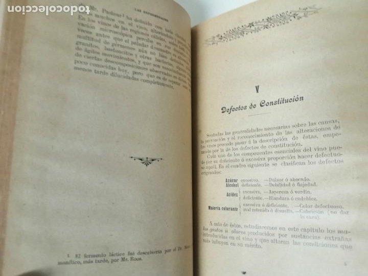 Libros antiguos: LAS ENFERMEDADES DEL VINO PRIEGO Y JARAMILLO 1900 ILUSTRADO MUY RARO - Foto 8 - 269300383