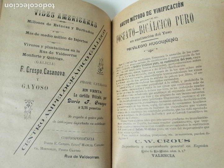 Libros antiguos: LAS ENFERMEDADES DEL VINO PRIEGO Y JARAMILLO 1900 ILUSTRADO MUY RARO - Foto 12 - 269300383