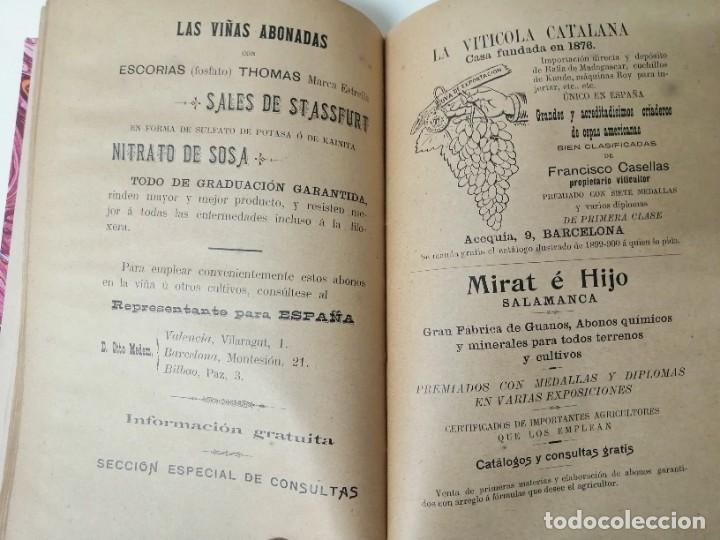 Libros antiguos: LAS ENFERMEDADES DEL VINO PRIEGO Y JARAMILLO 1900 ILUSTRADO MUY RARO - Foto 13 - 269300383