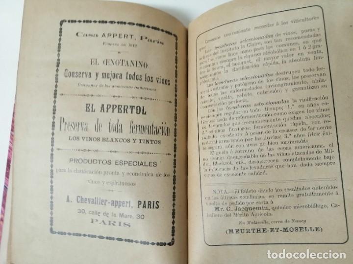 Libros antiguos: LAS ENFERMEDADES DEL VINO PRIEGO Y JARAMILLO 1900 ILUSTRADO MUY RARO - Foto 14 - 269300383
