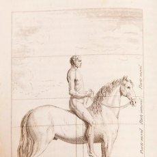 Libros antiguos: ENSAYOS DE LA EQUITACION - 1805 - FRANCISCO DE LAIGLESIA Y DARRAC - ILUSTRADO. Lote 272068548