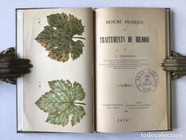 Libros antiguos: RÉSUMÉ PRATIQUE DES TRAITEMENTS DU MILDIOU. - VERMOREL, V. - Foto 3 - 276657238