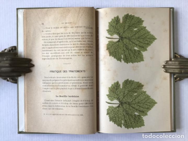 Libros antiguos: RÉSUMÉ PRATIQUE DES TRAITEMENTS DU MILDIOU. - VERMOREL, V. - Foto 5 - 276657238
