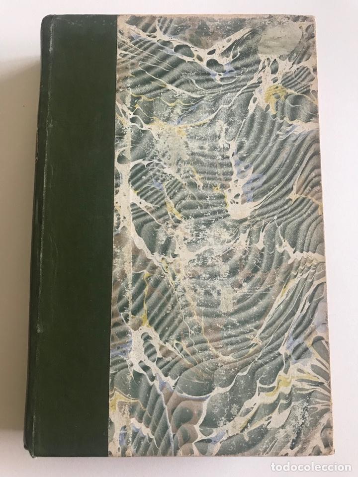 A.FRANCE.LE MANNEQUIN D'OSIER.19X12CM EDITADO EN FRANCÉS (Libros Antiguos, Raros y Curiosos - Otros Idiomas)