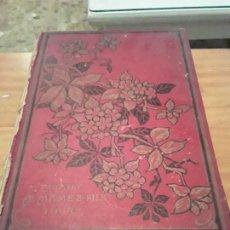 Libros antiguos: L' ILE ENVAHIE.GEORGES DE LYS EDIT.TOURS MAISON ALFRED MAME ET FILS.284 PAGINAS.. Lote 285186888