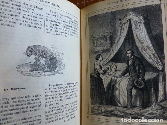 Libros antiguos: EDUCACIÓN PINTORESCA PARA NIÑOS TOMÓ I MADRID IMPRENTA DE MIGUEL CAMPO REDONDO 1857 - Foto 5 - 287721598