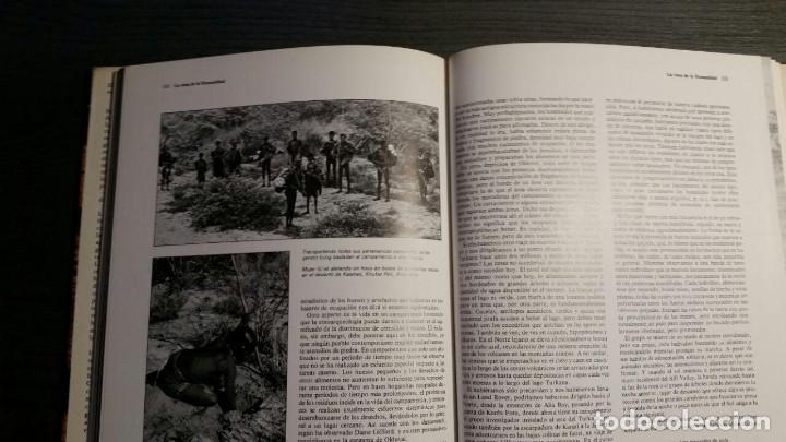 Libros: LOS ORÍGENES DEL HOMBRE - RICHARD E. LEAKEY / ROGER LEWIN - Foto 9 - 151873102