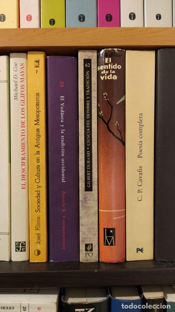 Libros: CIENCIA DEL HOMBRE Y TRADICION: EL NUEVO ESPIRITU ANTROPOLOGICO. GILBERT DURAND. Paidos. - Foto 3 - 176926260