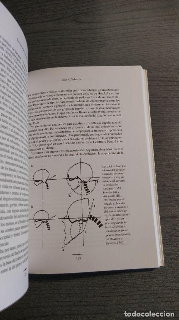 Libros: Hominizacion. Buscando nuestras raices . Jose Valverde (Autor). CSIC. Editor: Quercus - Foto 3 - 178055634