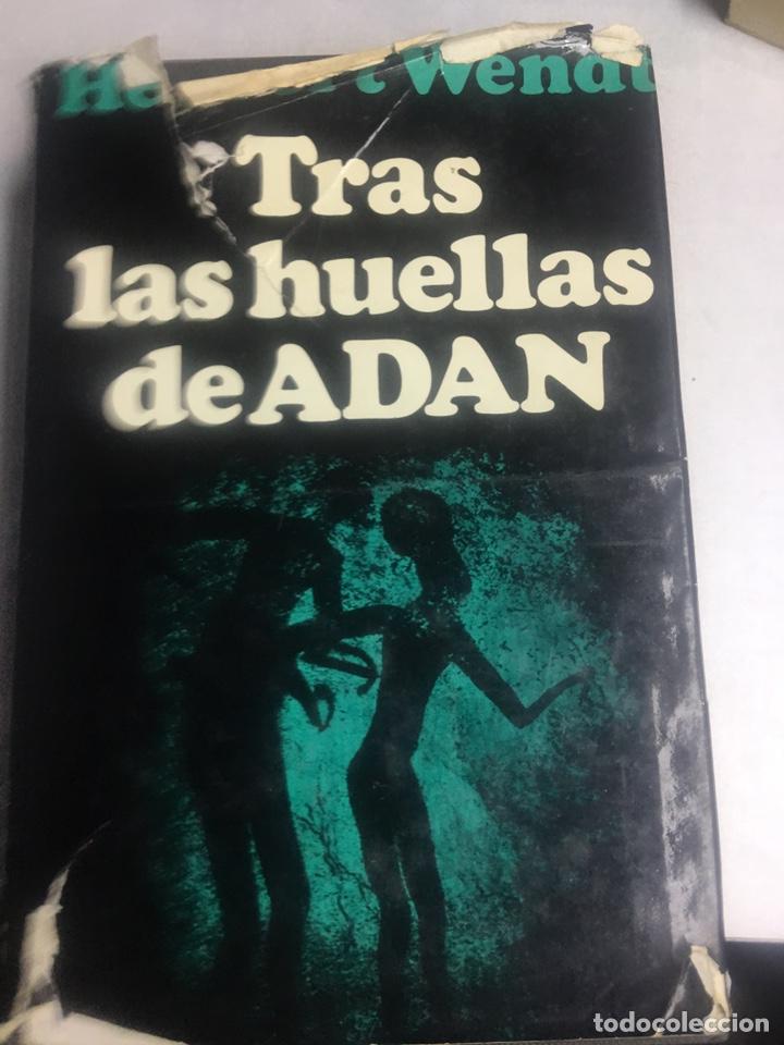 LIBRO - TRAS LAS HUELLAS DE ADAN - HERBERT WENDT (Libros Nuevos - Humanidades - Antropología)