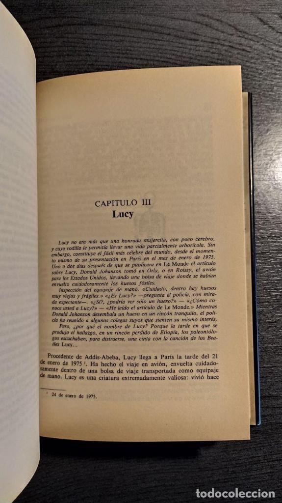 Libros: Lucy y los suyos: crónicas prehistóricas Yvonne Rebeyrol Edaf 1989 - Foto 4 - 193637110