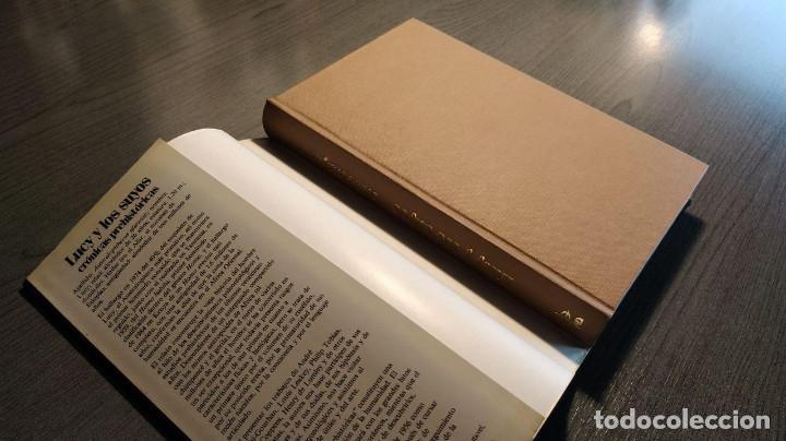 Libros: Lucy y los suyos: crónicas prehistóricas Yvonne Rebeyrol Edaf 1989 - Foto 8 - 193637110
