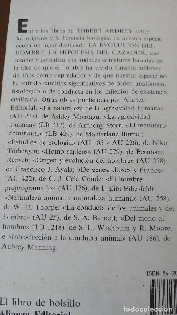 Libros: Robert ardrey la evolución del hombre alianza editorial prpm 1 - Foto 2 - 207924535