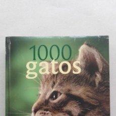Libros: 1000 GATOS. Lote 90844850