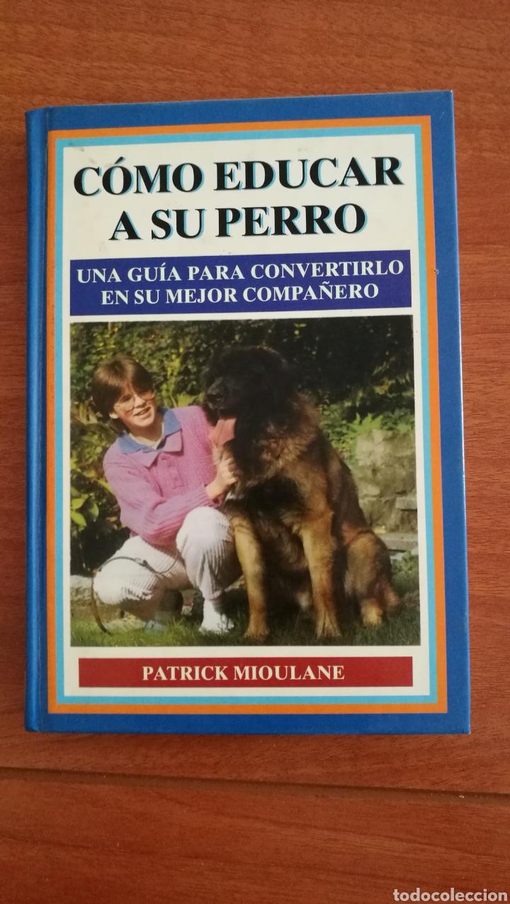 COMO EDUCAR A SU PERRO. PATRICK MIOULANE (Libros Nuevos - Educación - Aprendizaje)