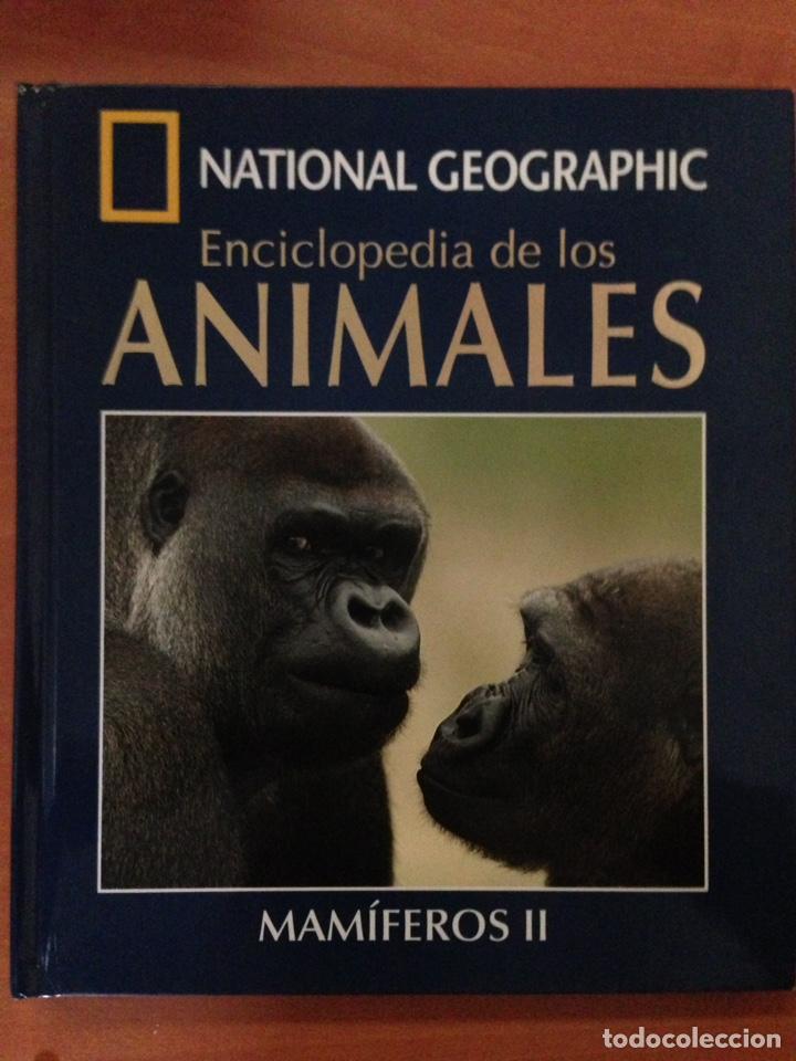 NATIONAL GEOGRAPHIC ENCICLOPEDIA DE LOS ANIMALES MAMIFEROS I LIBRO + DVD (Libros Nuevos - Educación - Aprendizaje)