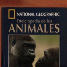 Libros: NATIONAL GEOGRAPHIC ENCICLOPEDIA DE LOS ANIMALES MAMIFEROS I LIBRO + DVD. Lote 135068750
