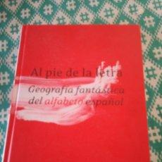 Libros: AL PIE DE LA LETRA. Lote 151703069