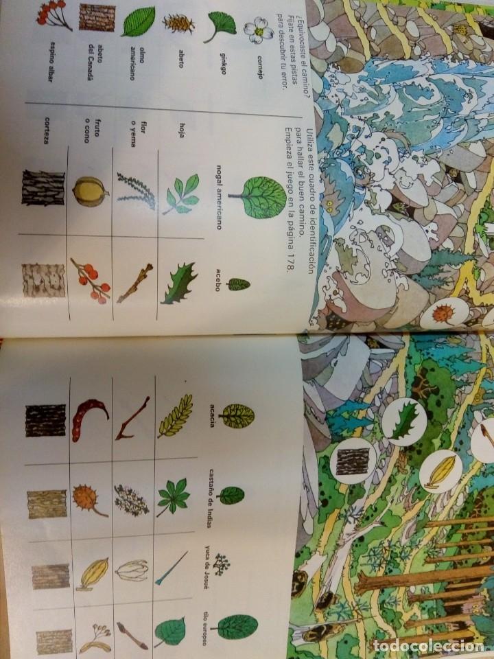 Libros: - EL MUNDO DE LOS NIÑOS - SALVAT - (15 TOMOS - COMPLETA)BUEN ESTADO-VER FOTOS,1974,REF 009 - Foto 6 - 155396130