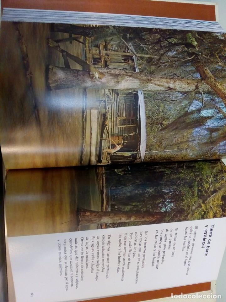 Libros: - EL MUNDO DE LOS NIÑOS - SALVAT - (15 TOMOS - COMPLETA)BUEN ESTADO-VER FOTOS,1974,REF 009 - Foto 7 - 155396130