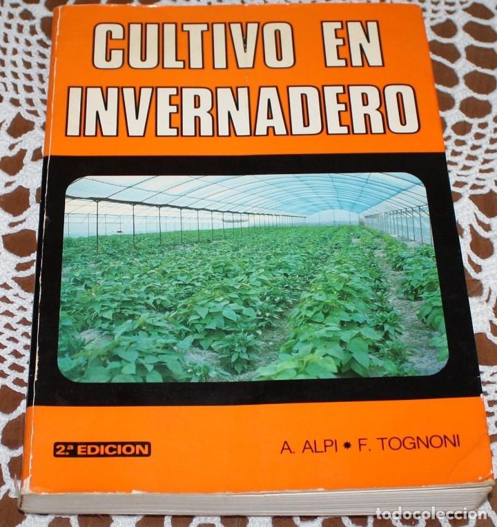 CULTIVO EN INVERNADERO (Libros Nuevos - Educación - Aprendizaje)