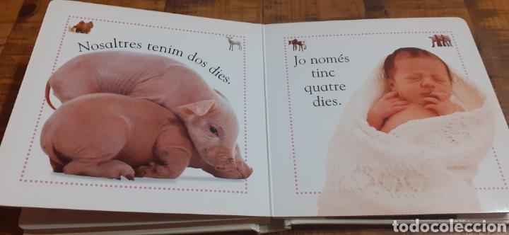 Libros: ANIMALS DE GRANJA - EDITORIAL MOLINO - Foto 8 - 186447912