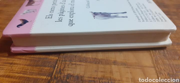 Libros: ANIMALS DE GRANJA - EDITORIAL MOLINO - Foto 13 - 186447912