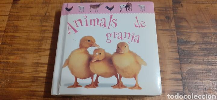 ANIMALS DE GRANJA - EDITORIAL MOLINO (Libros Nuevos - Educación - Aprendizaje)