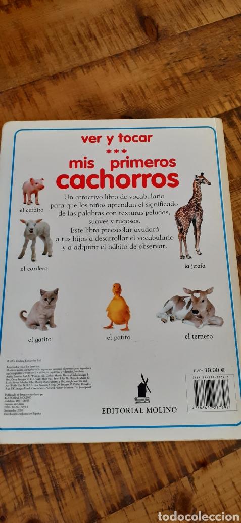 Libros: MIS PRIMEROS CACHORROS- VER Y TOCAR - Foto 19 - 187430168