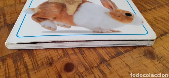 Libros: MIS PRIMEROS CACHORROS- VER Y TOCAR - Foto 23 - 187430168