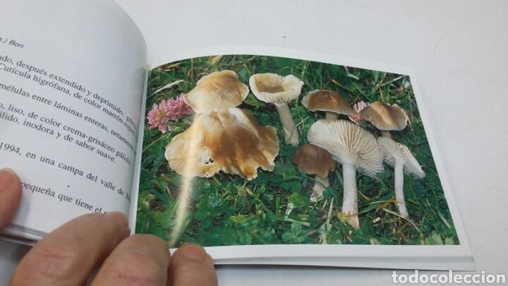 Libros: 50 setas cometíbles - Foto 2 - 199404807